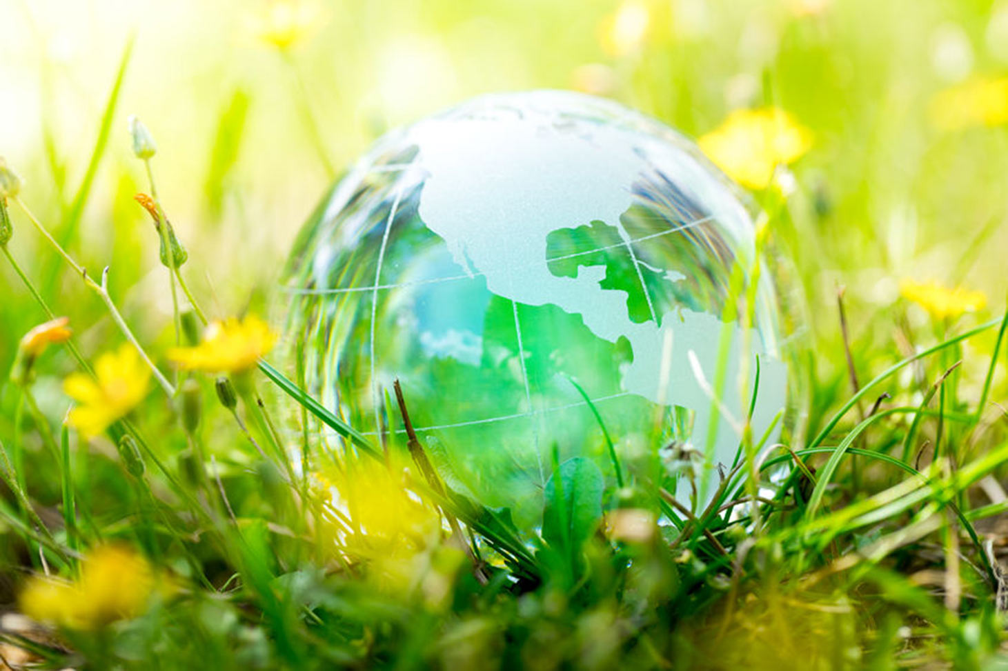 La sostenibilidad es un concepto integral